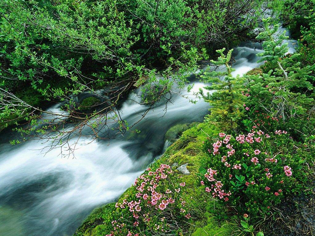... Mon voyage aux USA et Canada: La vie bet365 25 bonus bet365 optionale bonuscode est un long fleuve tranquille